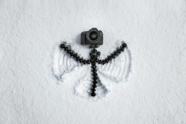 SnowAngelGorillaPod-HiRes